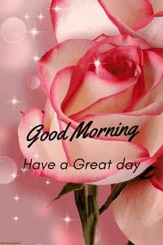 May God Bless You Today Have A Beautiful Day Good Morning Good