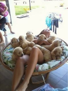 The luckiest girl in the world taking a bath in puppies :)