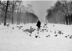 Paris 1960 by Robert Doisneau Robert Doisneau, Tuileries Paris, Jardin Des Tuileries, Paint Photography, Street Photography, Film Photography, Christophe Jacrot, 14 Avril, Photo Portrait