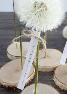 Pusteblume haltbar machen zum Verschenken autour du tissu déco enfant paques bébé déco mariage diy et crochet Diy Para A Casa, Pink Bouquet, Diy Home Crafts, Crafts For Teens, Kids Crafts, Fabric Crafts, Diy Gifts, Projects To Try, Christmas Gifts