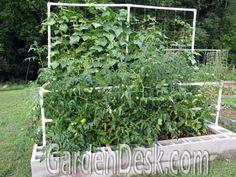 97 Best Cinder Block Gardens Images Cinder Block Garden Cinder - Cinder-block-garden-ideas