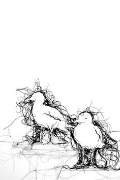 Thread drawings by Debbie Smyth - visit her website to see some incredible work. Thread Painting, Thread Art, Art Textile, Textile Artists, Free Machine Embroidery, Embroidery Art, Machine Applique, Fabric Birds, Fabric Art