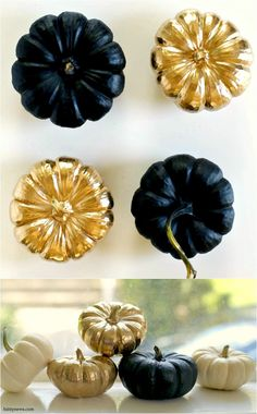 Mini pumpkins spray painted black and gold for Thanksgiving table decorations.  They would also make great candle holders, in my  opinion.