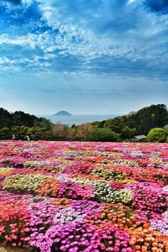 Noukono-shima #Fukuoka #Japan #JapanWeek  Subscribe today to our newsletter for a chance to win a trip to Japan http://japanweek.us/news  Like us on Facebook: https://www.facebook.com/JapanWeekNY