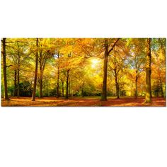 Large Autumn Trees Forest Canvas Wall Art Prints Painting Printed on Canvas,Framed And Stretched,Landscape Home Decor,Living Room Bed Room Hotel Wall Mural Decor (Autumn Forest) (Large, Gold Forest)