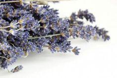 Levandulové polštáře | Levandulový polštář Provence | patchwork - dekorace