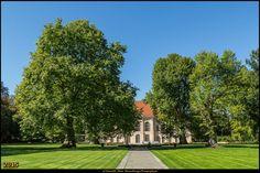 Schlosspark Schönhausen - 2 Das Schloss hinter den Bäumen #SchlossSchönhausen #SchlossparkSchönhausen #Berlin #Deutschland #Germany #biancabuergerphotography #igersgermany #igersberlin #IG_Deutschland #IG_Berlin #ig_germany #shootcamp #shootcamp_ig #canon #canondeutschland #EOS5DMarkIII #5Diii #pickmotion #berlinbreeze #diewocheaufinstagram #berlingram #visit_berlin #Pankow #Niederschönhausen #AOV5k #tree #baum