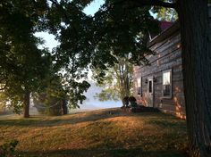 Rustic-Chic Foxglove Farm - 1 Hr from Toronto - Farm stays for Rent in Adjala-Tosorontio, Ontario, Canada Ontario City, Toronto Houses, Shabby Chic Antiques, Farm Stay, Horse Farms, Rustic Chic, Places Around The World, Renting A House, Great Places