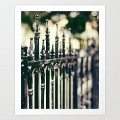 Iron Clad Art Print by Laura George - $15.00