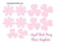 Forget me not paper flower templates forget template and filing angel cheek peony paper flowers diy paper flower patternstemplates video tutorials pink peony paper flowers mightylinksfo