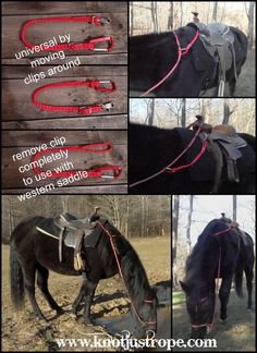 Rein Keeper Rein Keeper - Art Of Equitation Horse Camp, Horse Gear, Horse Tips, Horse Facts, Horse Accessories, Horse Saddles, Western Saddles, Western Horse Tack, Horse Halters