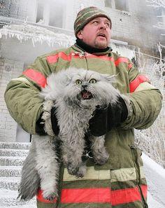 It's cold !