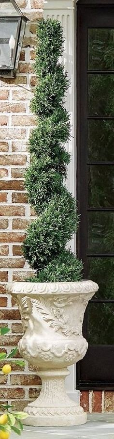 Verdant, lifelike and packed with twinkling lights, our cordless Rosemary Topiaries make a beautiful addition to any space, indoors or out. Each plant comes potted in a plastic liner so you can easily set it in your favorite planter or urn. Made from ultra-durable plastic for years of use.