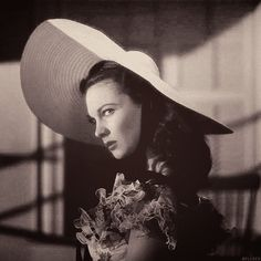 Welcome to Vivien-Leigh, an ever growing archive dedicated to appreciating and preserving Vivien. Real Movies, Good Movies, Librarian Humor, Scarlett O'hara, Library Science, 1 Gif, Vivien Leigh, Gone With The Wind, Icons