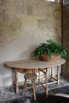 yummy earth tones all married. love the short round earthy pot holding the plant