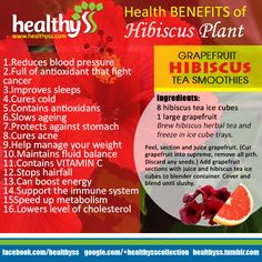 16 Health Benefits of Hibiscus plant! (cancer prevention)