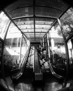 Andares - somos sólo luzes  En colaboración con @photographini (Pablo Armas)  #Guadalajara #enguadalajara #zapopan #gdlmx #gdl #megustagdl #igersguadalajara #igersmexico #mexico #beginnersmx #creativosmx #mexicoandando #mexigers #icu_mexico #loves_mexico #mexicanosconx #mexicolorido #urban #urbanexploration #urbano #bnw_globe #bnw_society #bnw_city_streetlife #vscocam #vscogdl #wanderludst #travelblog #liveauthentic
