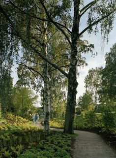 Sandgrund Park   Karlstad Sweden   Thorbjörn Andersson with Sweco Architects