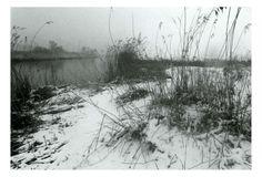 Winter in de Merwelanden, c. foto Peter van Loon. Peter (P.A.)van Loon (@LoonPeterDordt) | Twitter