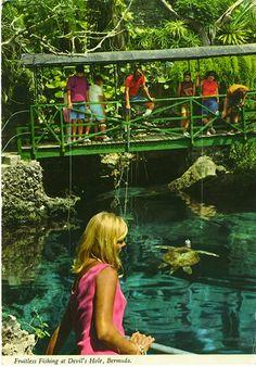 Fruitless fishing. John Hinde postcards of Bermuda