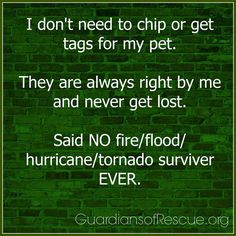 Microchip your pets!    #pets #care #safety #microchipping #lost #tips