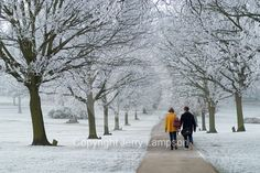 Stock photos - Young couple walking in a winter landscape