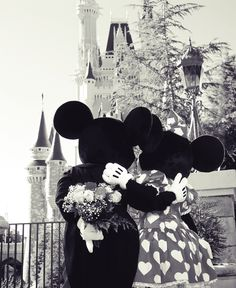 love Minnie and mickey