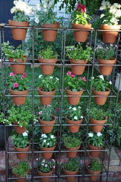 Wall garden edible ideas for 2020 Small Balcony Garden, Garden Planters, Vertikal Garden, Orquideas Cymbidium, Vertical Garden Design, Garden Stand, Bottle Garden, House Plants Decor, Pallets Garden