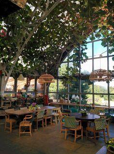 Garden Barn - Isle of Mull Cheese, Tobermory Traveller Reviews - TripAdvisor