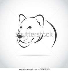 Vector image of an female lion head on white background by yod67, via Shutterstock