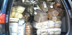 A Polícia Federal, com a participação da Agência Pernambucana de Vigilância Sanitária e do Ministério Público de Pernambuco (MPPE), realizou na manhã de ontem (7) a incineração de 361 quilos de drog ...