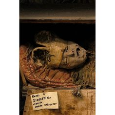 "Mummies in the Capuchin Catacombs below Palermo, Sicily, ""where old Italians got to die"""
