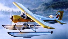 Murphy Moose. 360 hp Russian Radial that is happy to run on MoGas. If you can't find me, I'll be flying to Patagonia.