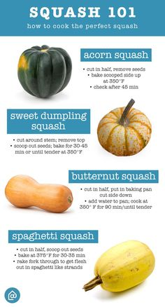 Fall Squash guide: know which squash is which and how to cook it perfectly!