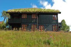 Gras isoleert de huizen perfect; én het staat nog mooi in het landschap ook zoals hier in Noorwegen: www.natuurlijkscandinavie.nl