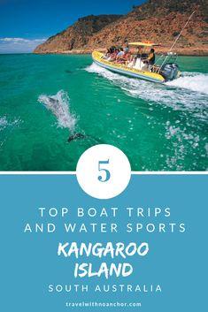 Top Boat Trips and Water Sports on Kangaroo Island, South Australia Visit Australia, South Australia, Australia Travel, Australia Holidays, Top Boat, Kangaroo Island, Packing, Budget, New Zealand Travel