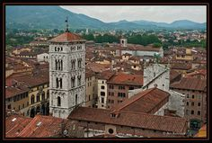 Looking Down on the Old Town - Lucca, Lucca