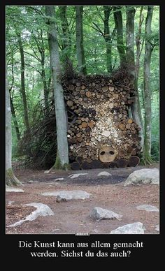 woodworking for beginners Image Categories, What Do You See, Really Funny, Wonders Of The World, Nature, Haha, Street Art, Beautiful Pictures, Funny Pictures