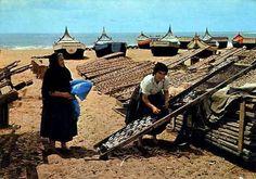 Nazare peixe a secar Portugal, Lithuania, Portuguese, Railroad Tracks, Cuba, Boat, Terra, Regional, Fish