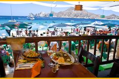 Medano Beach's Best Restaurants recommendations by local experts in Cabo San Lucas