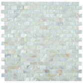 Found it at Wayfair - Shore Natural Seashell Textured Mosaic in White