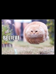 You just have to believe!!! (And maybe buy a jetpack)....