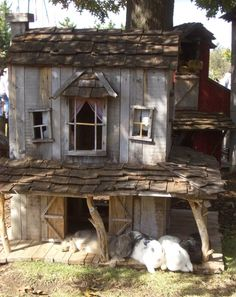 Rabbit house from pallets in garden