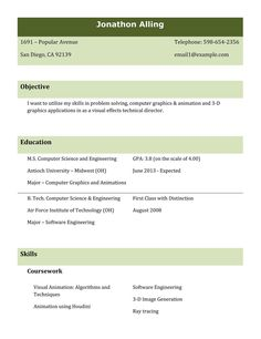 types resumes formats sample best professional resume templates how type objective functional fko - Job Resume Builder