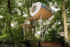 Treehouse Djuren Made By Two Large Oaks | The Design Inspiration