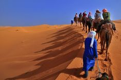 Morocco Camel Trekking is an usual touristic wasteland commotion. Camel Trekking has always been a well acknowledged and much loved type of Morocco holidays understanding.