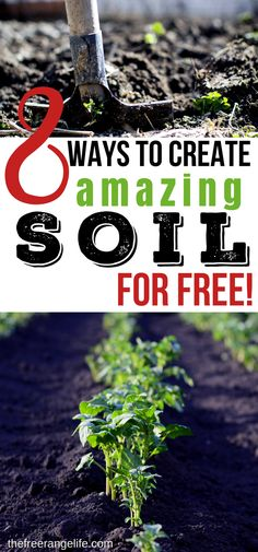 Vegetable Gardening Tips | DIY Frugal Gardening- How to Improve your soil and create amazing soil for free!