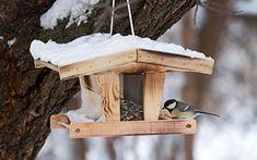 En hiver, la chute des températures entraîne la raréfaction des éléments dont se nourrissent les oiseaux. Dès aujourd'hui, et ce jusque l'arrivée du printemps, nous vous invitons donc à leur proposer quelques délicieux menus…