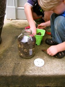 making worm homes - my girl and her friends are obsessed with finding worms