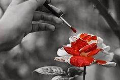 Quem dera eu aprendesse a viver cada dia como se fosse o último. O último pra esquecer tolices. P/ ignorar o q, no fim das contas, não tem a menor importância. P/ rir até o coração dançar. P/ chorar toda dor q não transbordou e virou nódoa no tecido da vida. P/ aprontar todas as artes q a emoção quiser. P/ ser útil em toda circunstância q me for possível. O último p/ não deixar o tempo escoar inutilmente entre os dedos das horas. Ana Jacomo